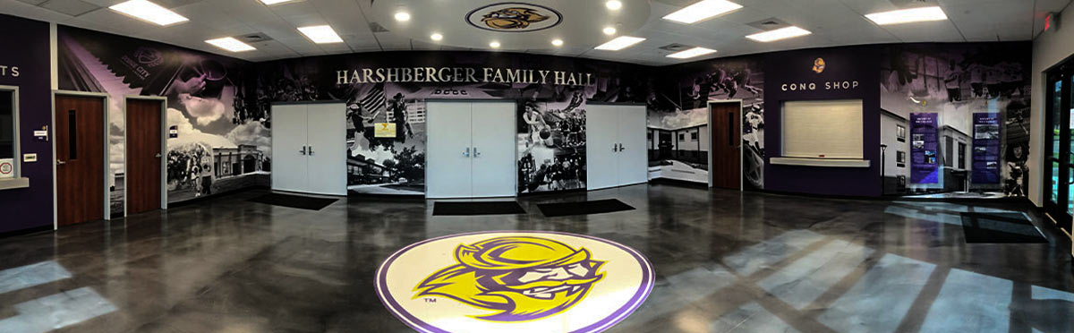 Floor Surface and Ceiling Graphics